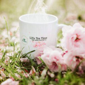Best Loose Leaf Tea For Healthy Senior
